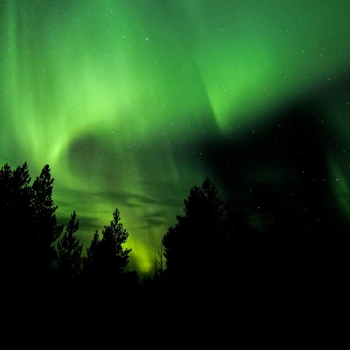 large_Northern_Lights_-_Photo_Markus_Alatalo
