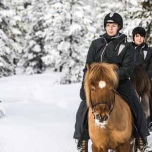 Horseback_Riding_-_Photo_Markus_Alatalo
