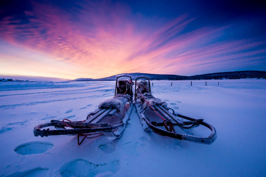 Dog sledding, Torne River, Icehotel