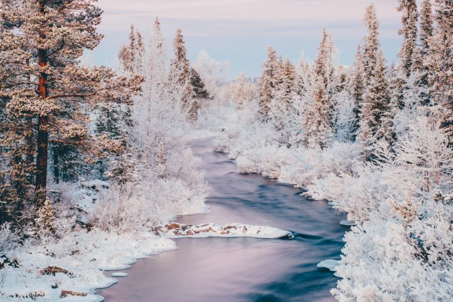 medium_nature-swedish-lapland-icehotel
