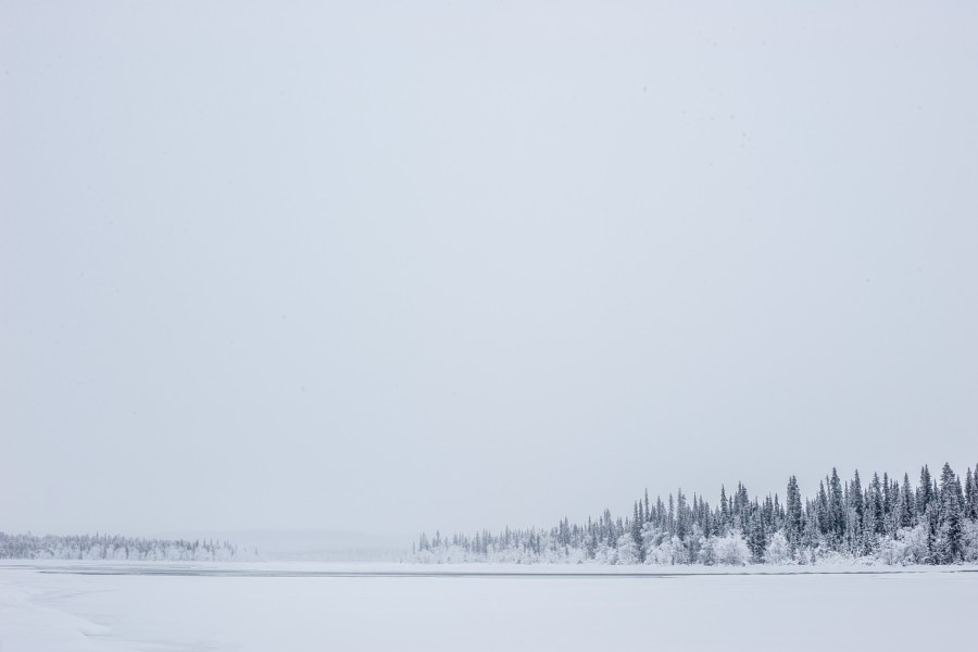 medium_winter-swedish-lapland-torne-river-icehotel